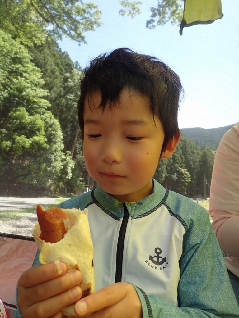 f:id:yoiyoi-kawakami:20170527190006j:plain
