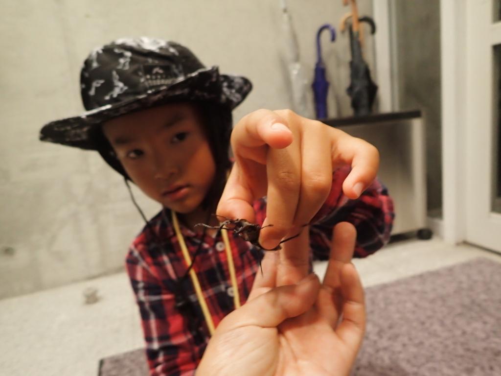 f:id:yoiyoi-kawakami:20170803190044j:plain