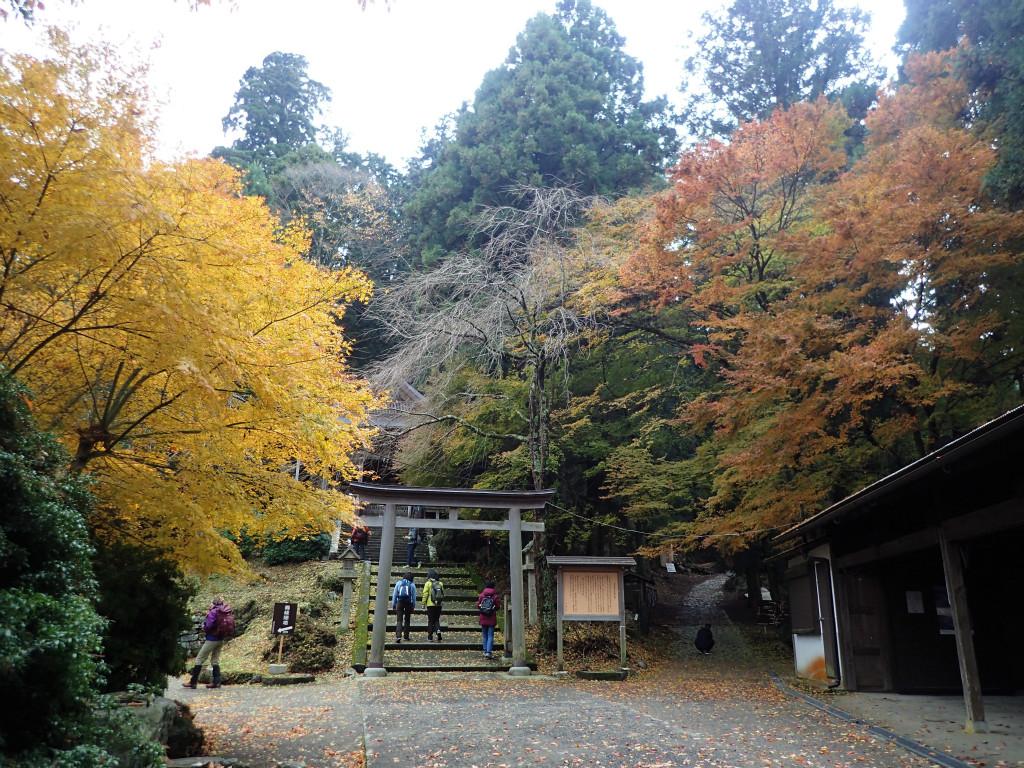 f:id:yoiyoi-kawakami:20171124193012j:plain
