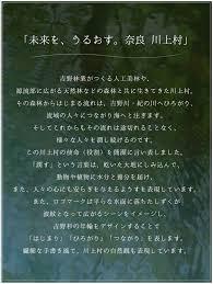 f:id:yoiyoi-kawakami:20180606204855j:plain