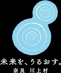 f:id:yoiyoi-kawakami:20180606204904p:plain