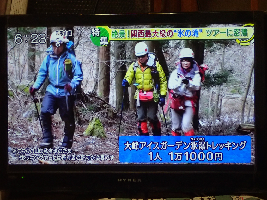 f:id:yoiyoi-kawakami:20190215215124j:plain