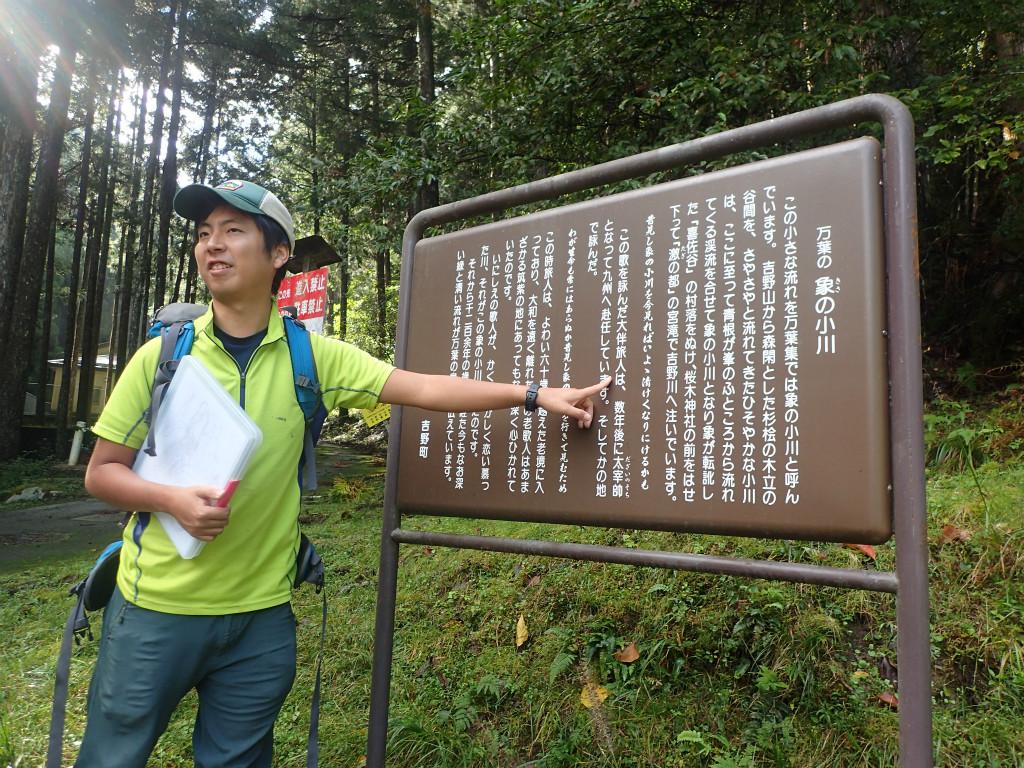 f:id:yoiyoi-kawakami:20191022214436j:plain