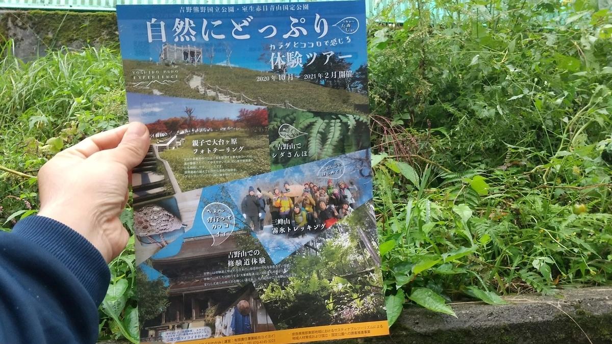 f:id:yoiyoi-kawakami:20201010125553j:plain