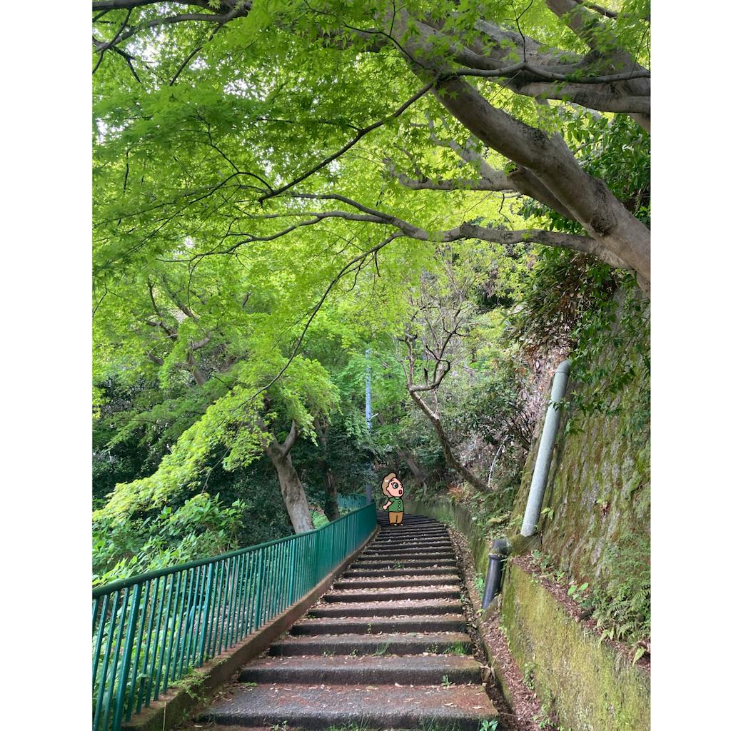 石清水八幡宮参道