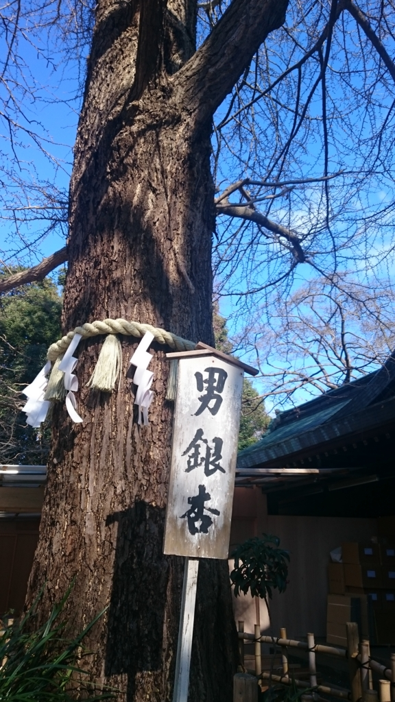 f:id:yokaze-yumeyui:20161215173845j:plain