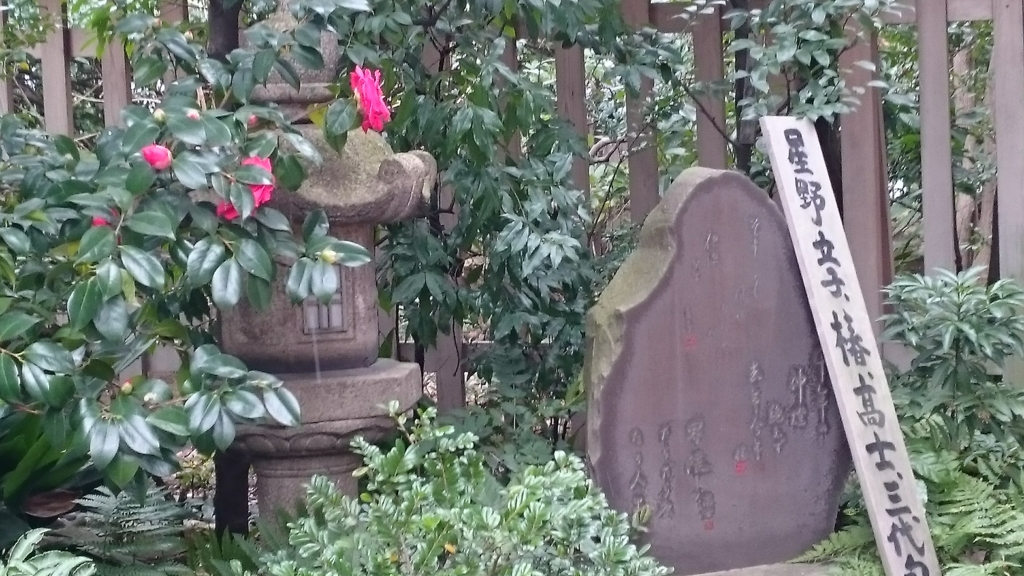 f:id:yokaze-yumeyui:20170224185249j:plain