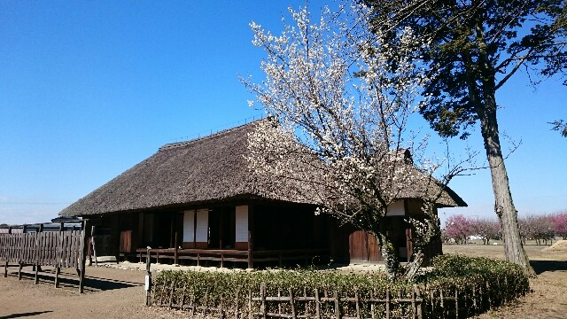 f:id:yokaze-yumeyui:20170225191439j:image