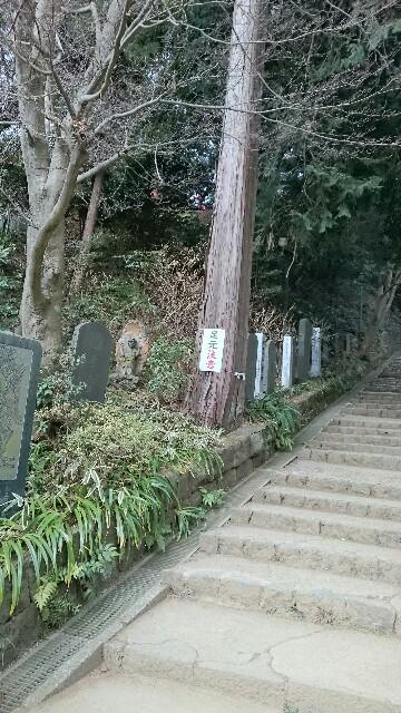 f:id:yokaze-yumeyui:20170228204400j:image