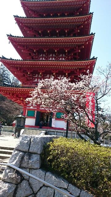 f:id:yokaze-yumeyui:20170228223905j:image