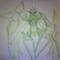新緑の暗殺者 シノビOX