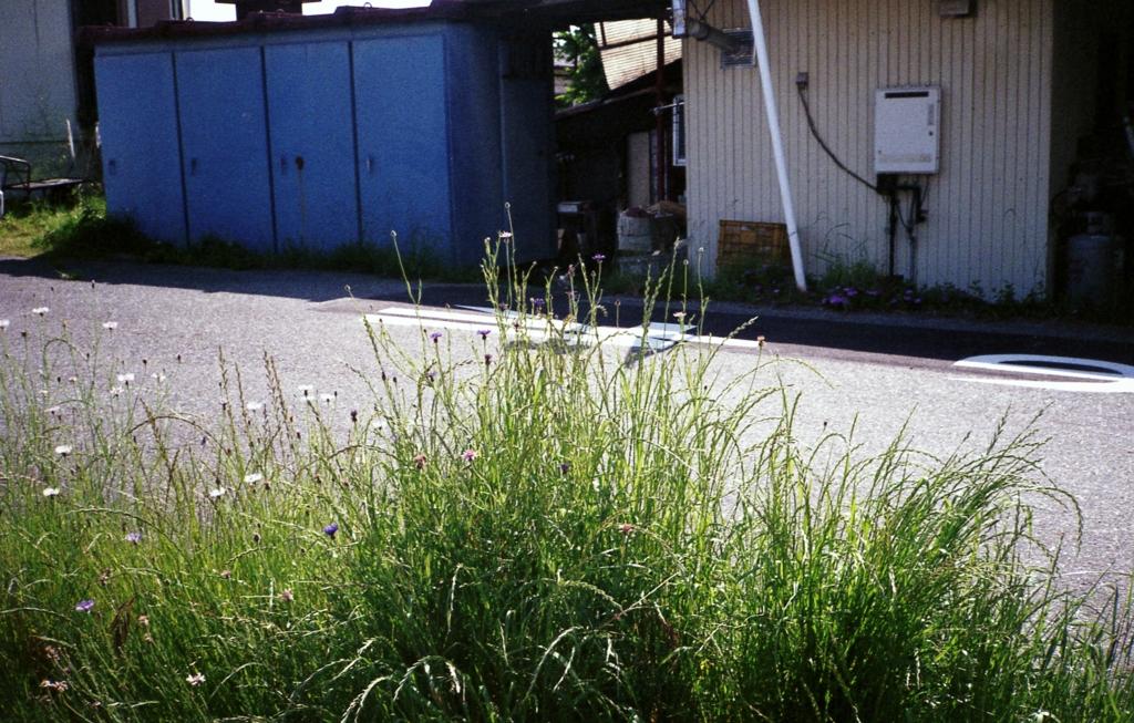 f:id:yoknahasegawa:20170527213424j:plain