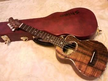 f:id:yoko-guitar:20160927192130j:image:w360
