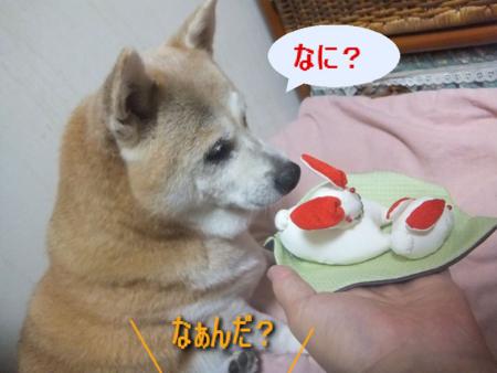 f:id:yoko0081jun:20120918221455j:image
