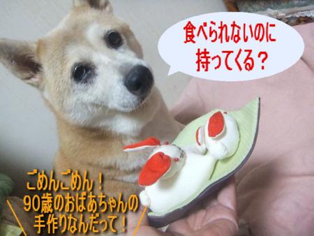 f:id:yoko0081jun:20120918221515j:image