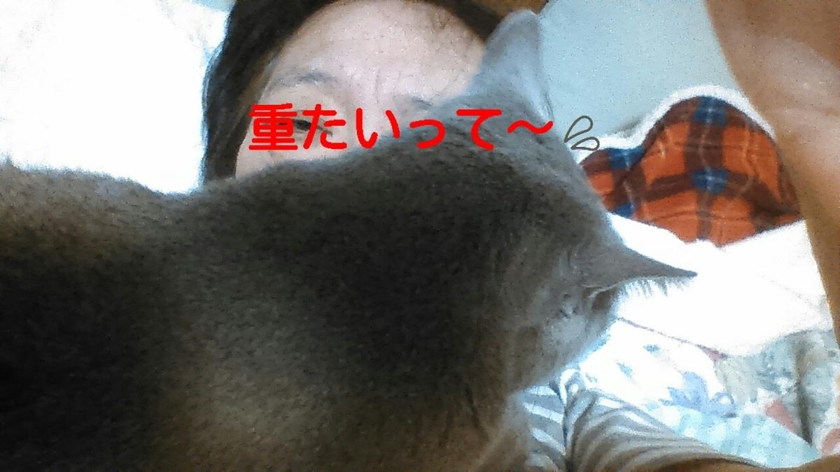 f:id:yoko0081jun:20200218233543j:plain