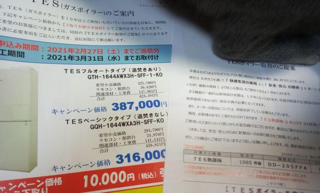 f:id:yoko0081jun:20210109205009j:plain