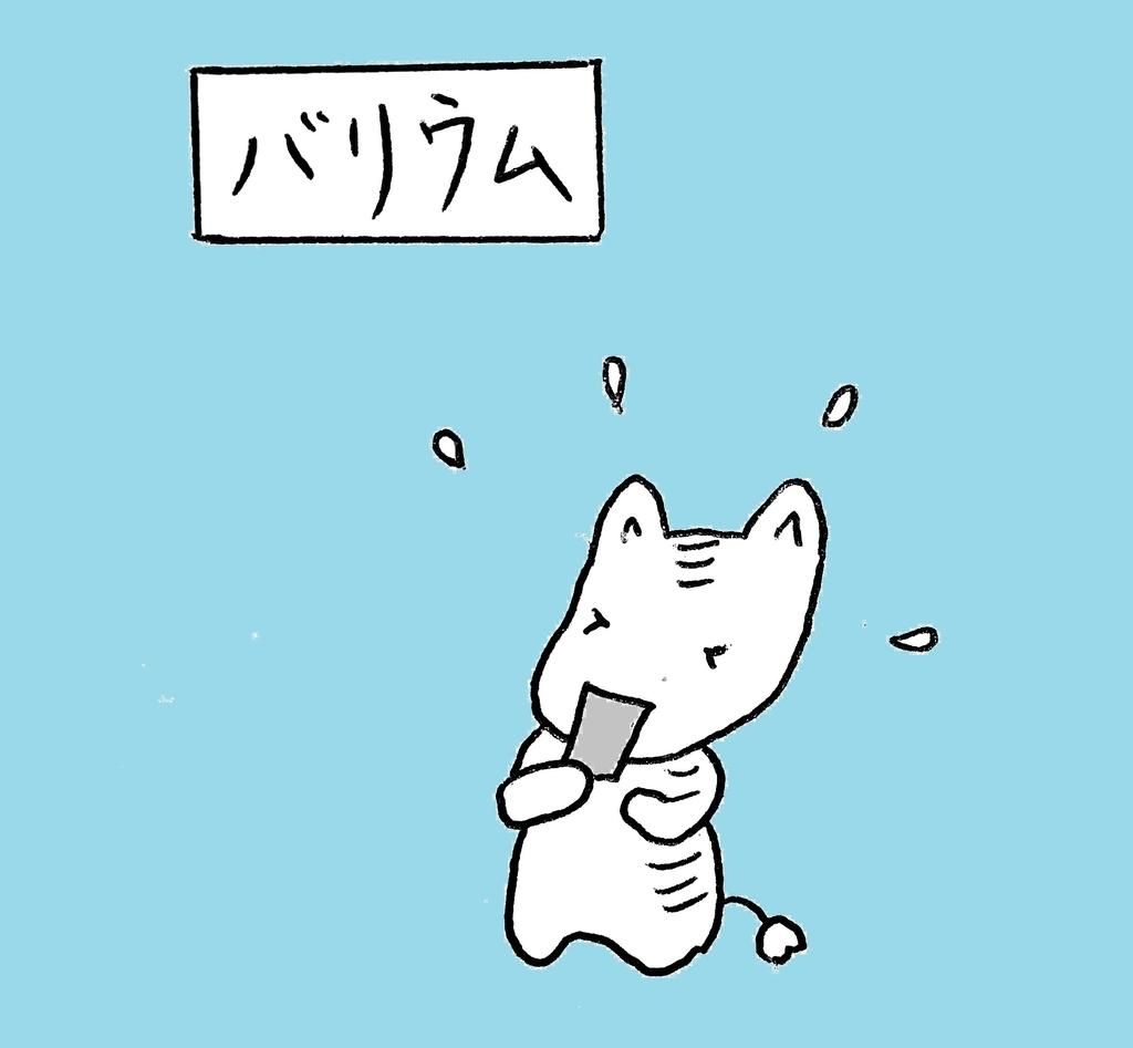 f:id:yoko_shimauma:20190226214547j:plain