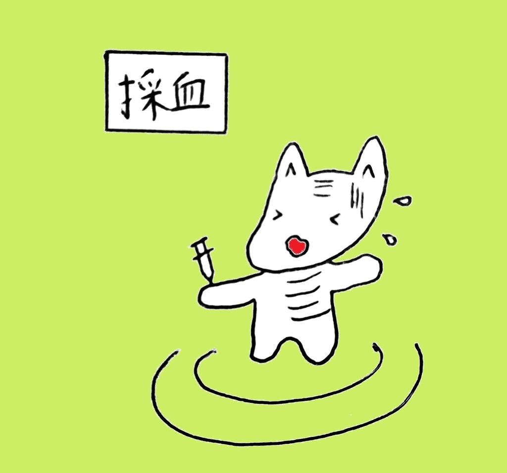 f:id:yoko_shimauma:20190226214553j:plain