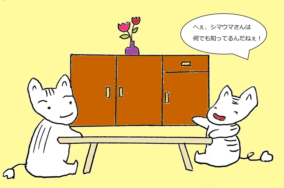 f:id:yoko_shimauma:20190325222559j:plain
