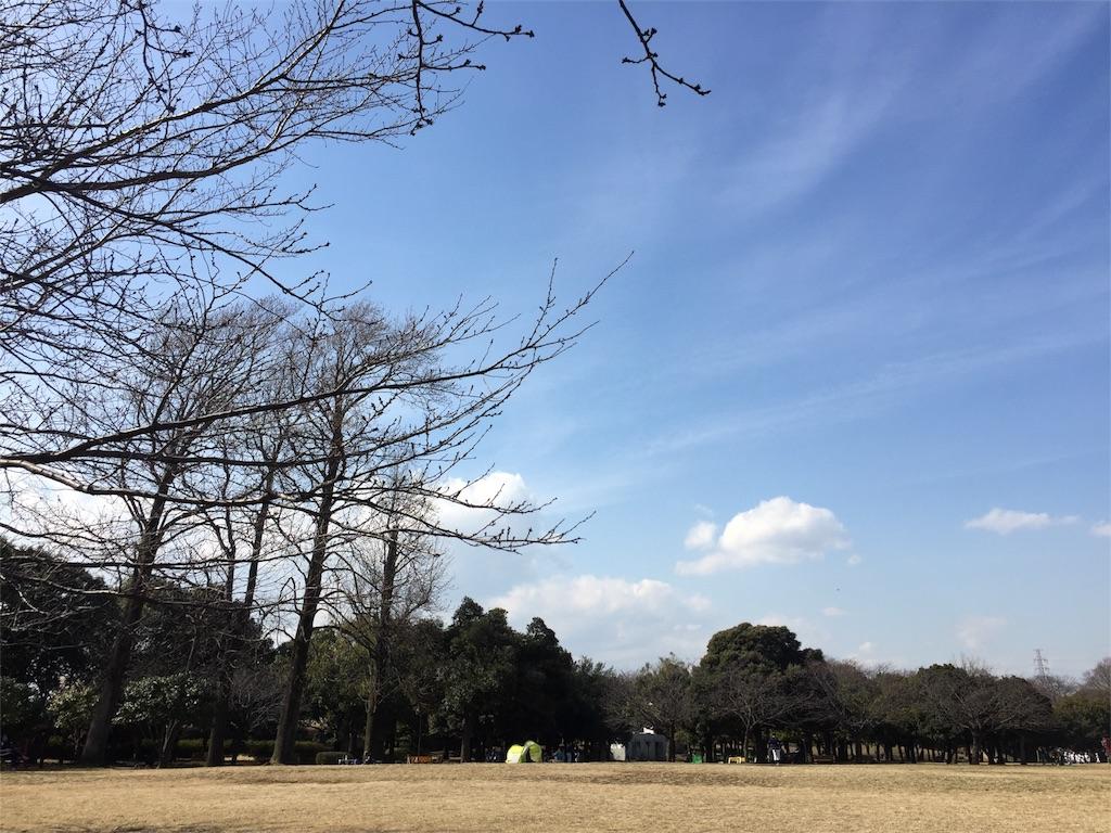 f:id:yoko_yokohama:20170226215337j:image