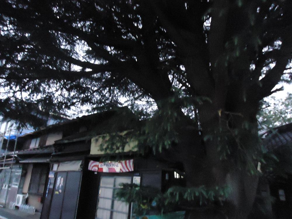 f:id:yokobentaro:20161012123552j:plain