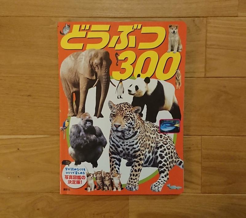 f:id:yokocha01:20200706211141j:plain