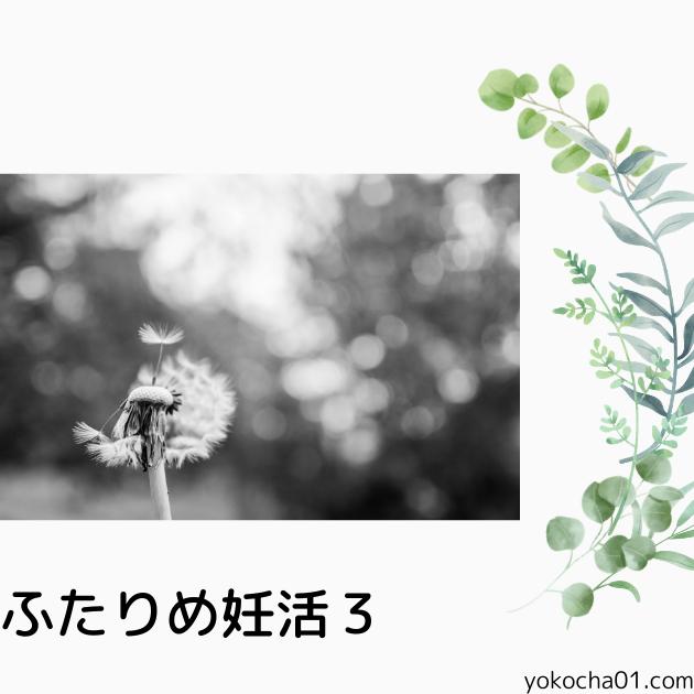 ふたりめ妊活3