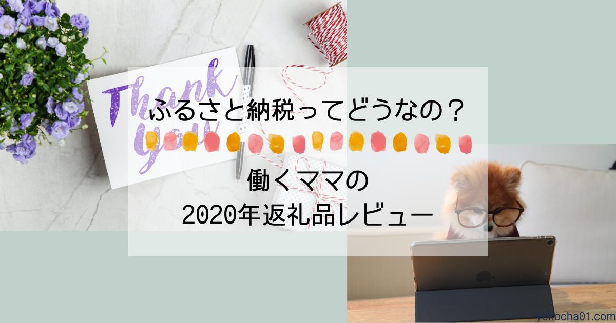 ふるさと納税2020年|働くママの返礼品レビュー