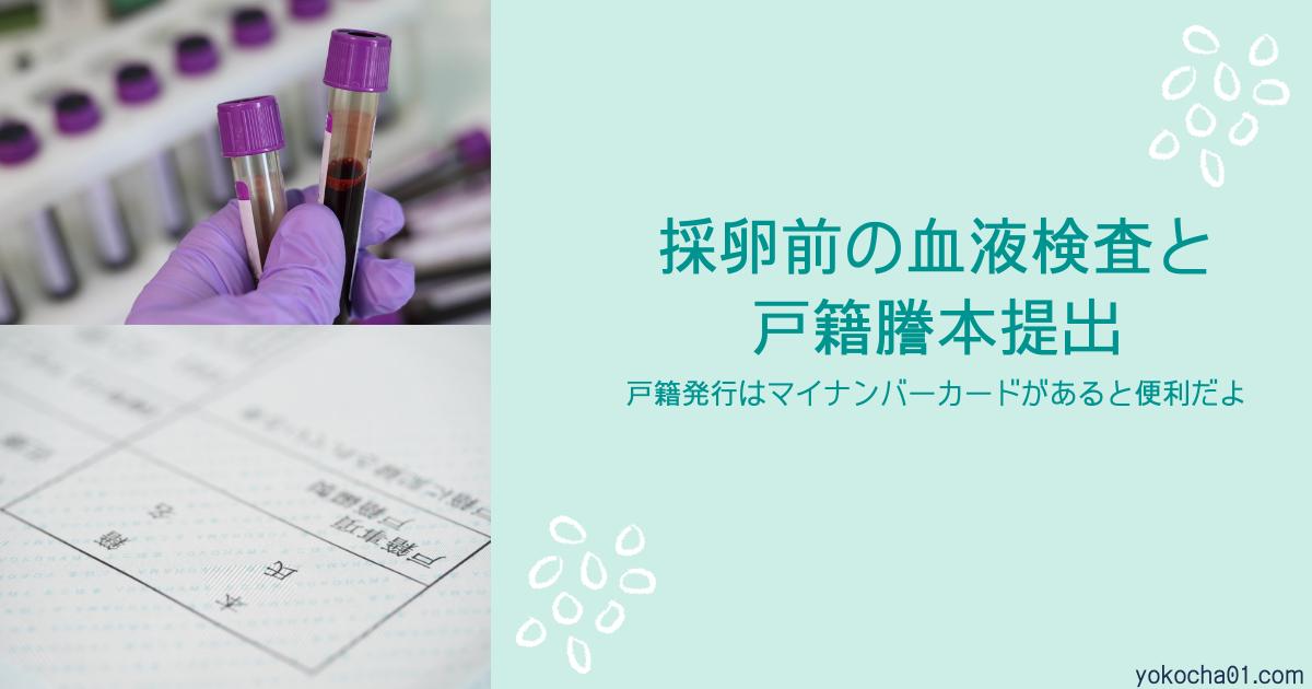 採卵前の血液検査と戸籍謄本提出|ふたりめ妊活7
