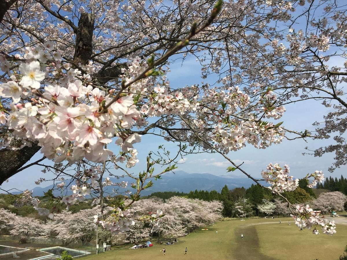 f:id:yokogawa-ijuu:20200423170926j:plain