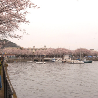 f:id:yokohama-kukan:20090406174839j:image