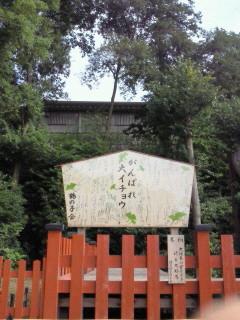 f:id:yokohama-kukan:20101003085500j:image