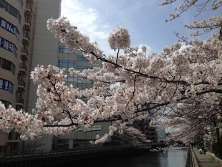 f:id:yokohama-kukan:20140412104632j:image