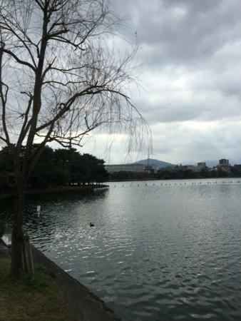 f:id:yokohama-kukan:20160204112107j:image