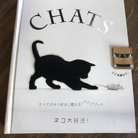 f:id:yokohama-kukan:20180207130709j:image:w360