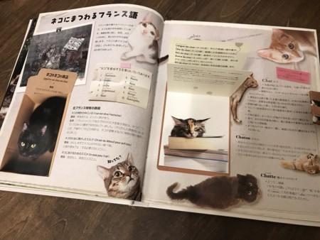 f:id:yokohama-kukan:20180207131302j:image