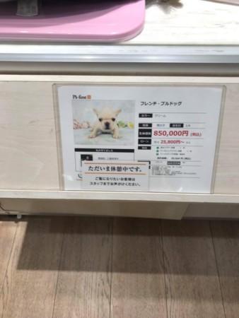 f:id:yokohama-kukan:20180316131757j:image