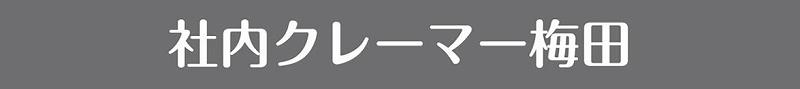 f:id:yokohama-style:20170930153034j:plain