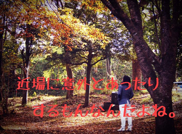 f:id:yokohamamegane:20161119132534j:plain