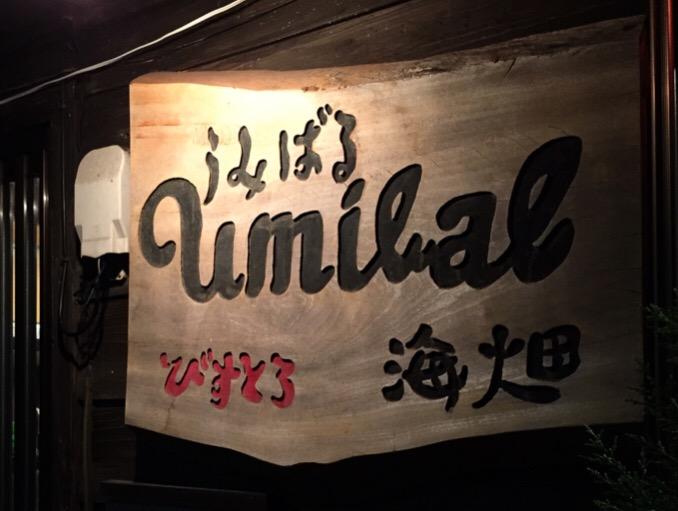 f:id:yokohamamegane:20170406230618j:plain