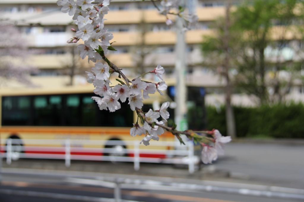 f:id:yokohamamegane:20170414213430j:plain