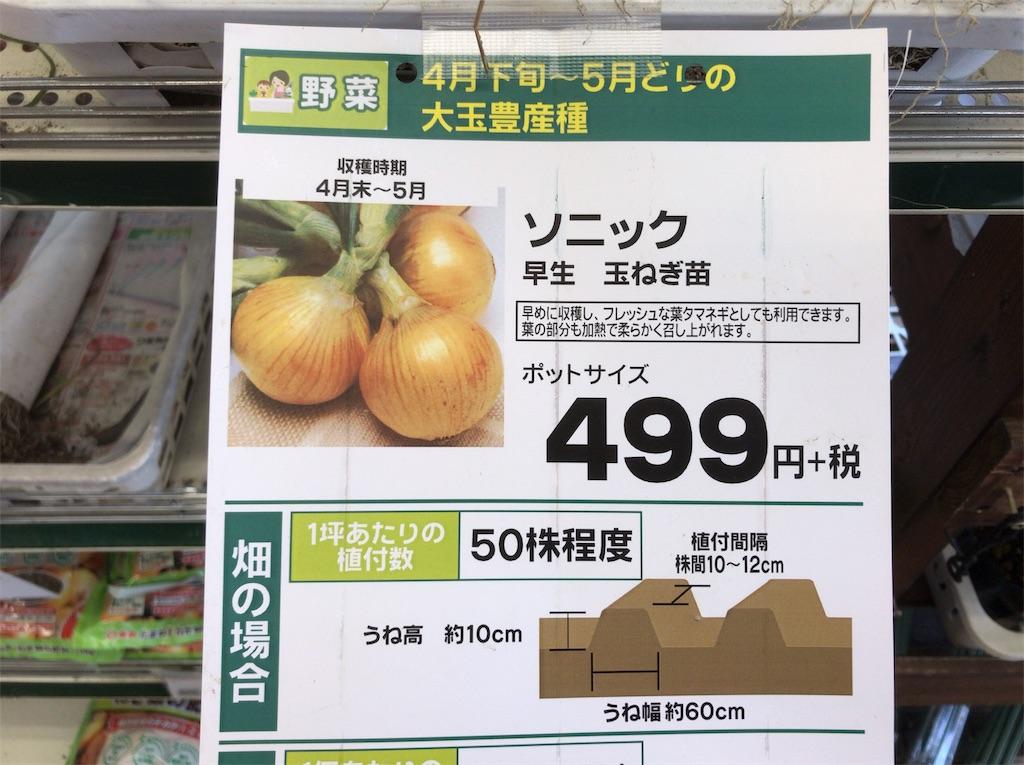 f:id:yokohamamiuken:20181114173444j:image