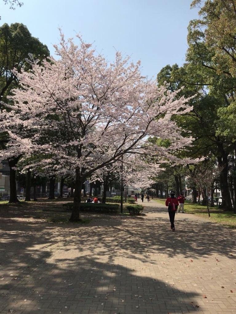 f:id:yokohamamiuken:20181201223139j:image