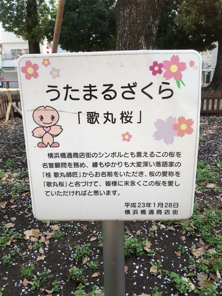 f:id:yokohamamiuken:20181201223144j:image