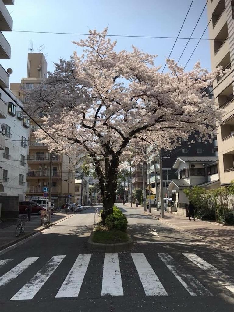 f:id:yokohamamiuken:20181201223221j:image