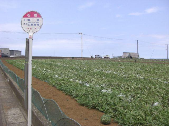 f:id:yokohamamiuken:20181206055005p:plain