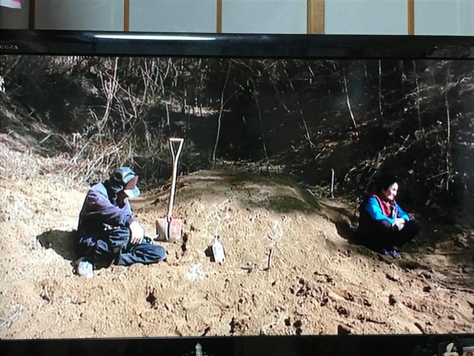 f:id:yokohamamiuken:20181214231504j:plain
