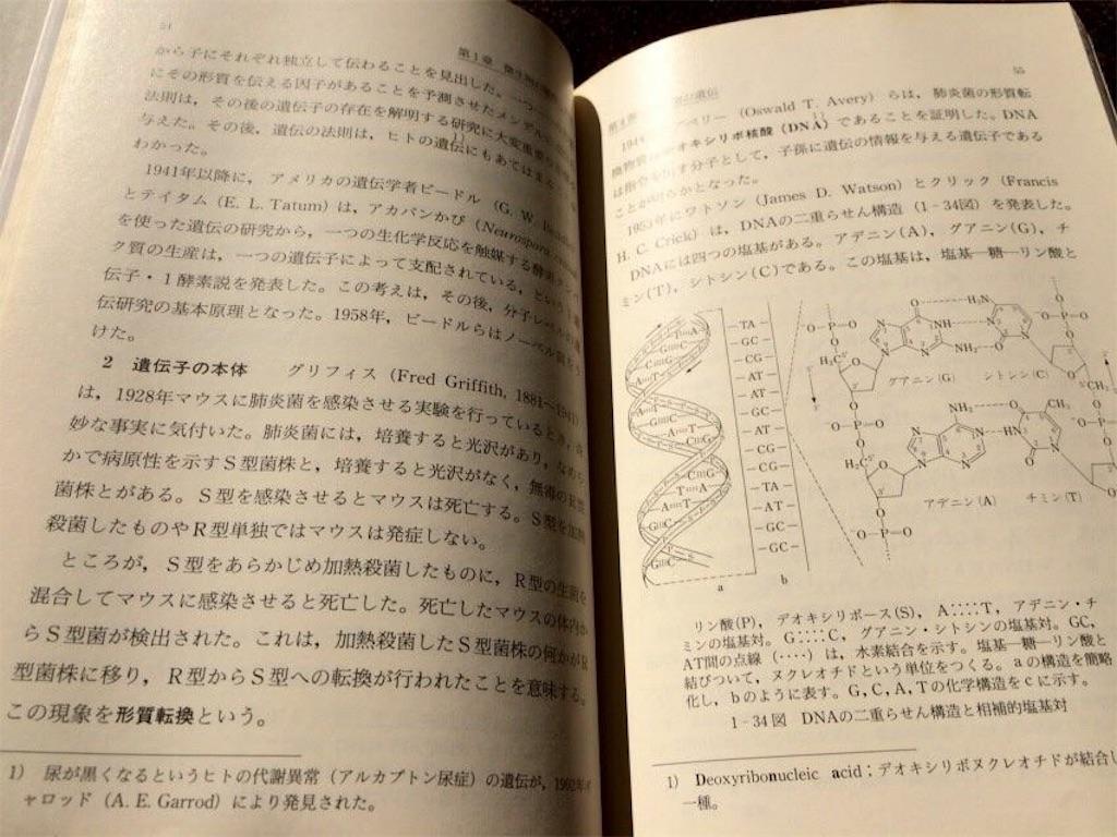 f:id:yokohamamiuken:20181226130936j:image