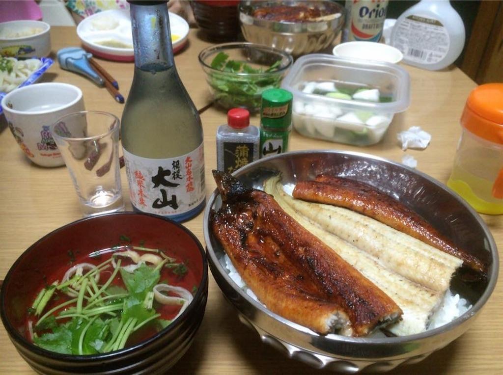f:id:yokohamamiuken:20190101232917j:image